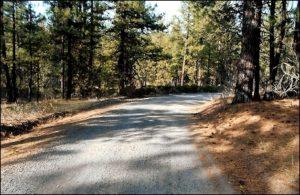 lot#49.21d Oregon Land
