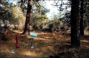 lot#49.21c Oregon Land