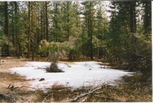 lot#49.21f Oregon Land