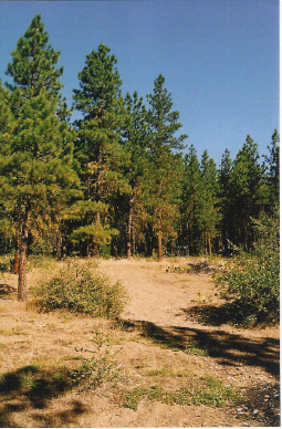 affordable land in oregon