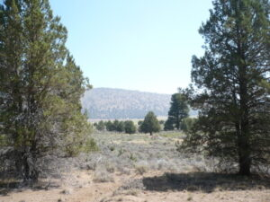 northern california land for sale