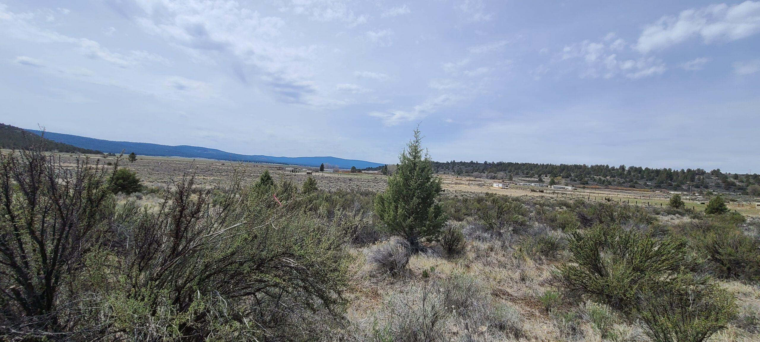 Oregon Farm Land lot 12.10