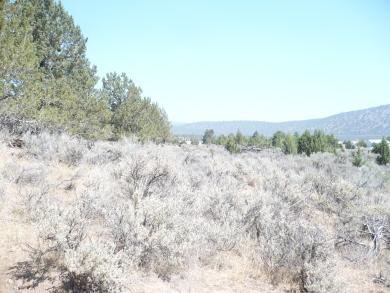 cheap California land