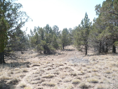 off grid california land for sale